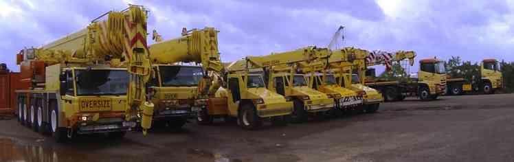Our cranes