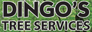 Dingo's Tree Services