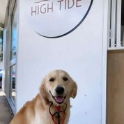 High Tide Coffee Pty ltd