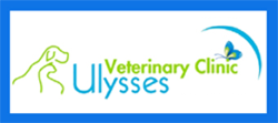 Ulysses Veterinary Clinic Cairns