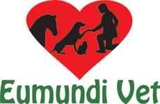 Eumundi Vet