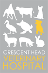 Crescent Head Veterinary Hospital