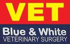 Blue & White Veterinary Surgery Woolgoolga