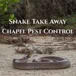 Chapel Pest Control & Snake Take Away