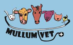Mullumbimby Veterinary Clinic