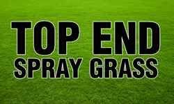 Top End Spray Grass