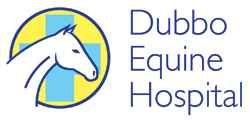 Dubbo Equine Hospital