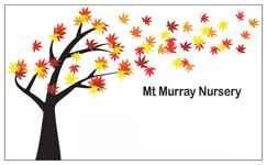 Mt Murray Nursery