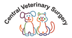 Central Veterinary Surgery