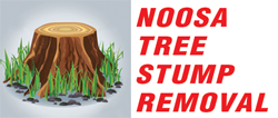 Noosa Tree Stump Removal