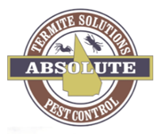 Absolute Termite Solutions & Pest Control