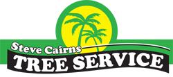 Steve Cairns Tree Services