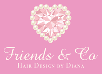Friends & Co Hair Design by Diana