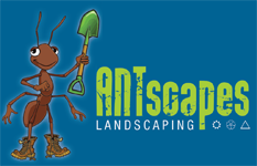 Antscapes Landscaping