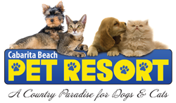Cabarita Beach Pet Resort