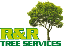 R&R Tree Lopping Service