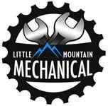 Little Mountain Mechanical