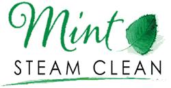 Mint Steam Clean