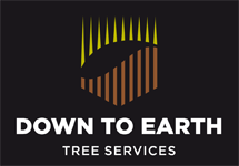 Down To Earth Tree Services