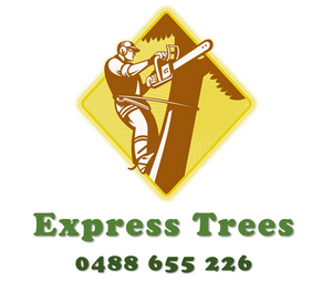 Express Trees