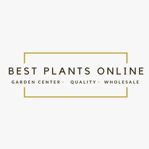 Best Plants Online