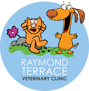 Raymond Terrace Veterinary Clinic