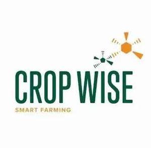 Crop Wise-Proserpine