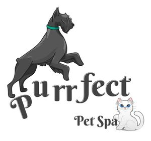 Purrfect Pet Spa