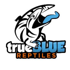 True Blue Reptiles- Mobile Reptile Parties