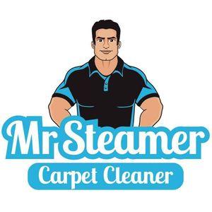 Mr Steamer Carpet Cleaner
