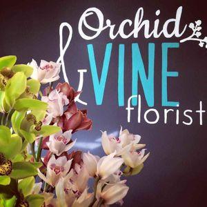 Orchid & Vine Florist
