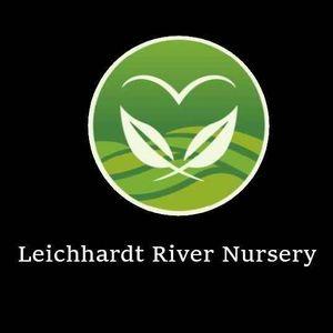 Leichhardt River Nursery