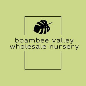 Boambee Valley Wholesale Nursery
