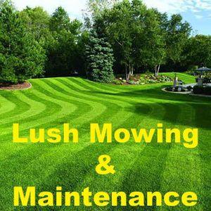 Lush Mowing & Maintenance